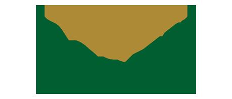 rolex-logo-1